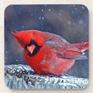 BEAUTIFUL RED CARDINAL PUFFY BIRD IN WINTER COASTER
