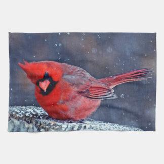 BEAUTIFUL RED CARDINAL PUFFY BIRD IN WINTER KITCHEN TOWEL