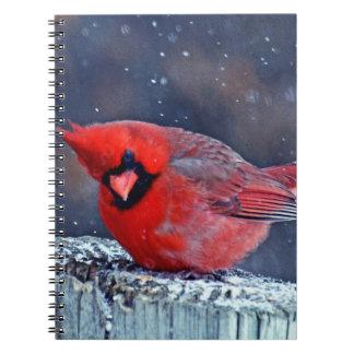 BEAUTIFUL RED CARDINAL PUFFY BIRD IN WINTER NOTEBOOK