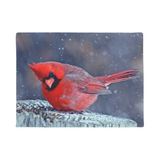 BEAUTIFUL RED CARDINAL PUFFY BIRD WINTER DOOR MAT
