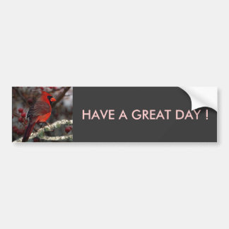 Beautiful Red Cardinal with winter berries Bumper Sticker