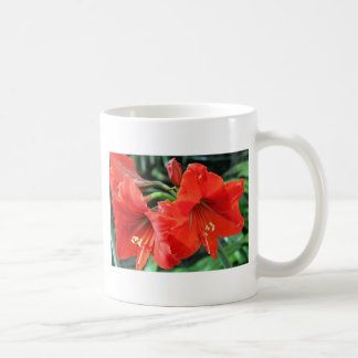 Beautiful Red Flower Photograph Coffee Mug