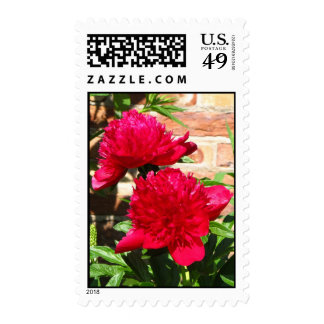 Beautiful Red Postage
