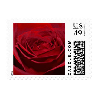 Beautiful Red Rose Stamps