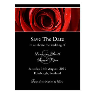 Beautiful Red Rose Save The Date Postcard