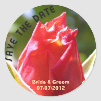 Beautiful red rose save the date wedding classic round sticker