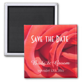 beautiful red rose save the date  wedding magnet. magnet