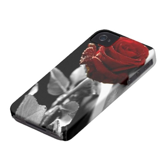 Beautiful Red Rose with Black & White background iPhone 4 Case-Mate Case