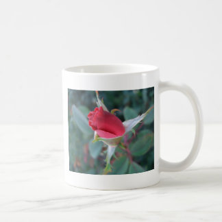 Beautiful Red Rosebud CricketDiane Roses Coffee Mug