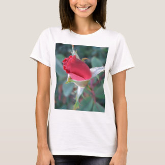 Beautiful Red Rosebud CricketDiane Roses T-Shirt