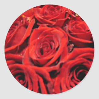 Beautiful red roses classic round sticker
