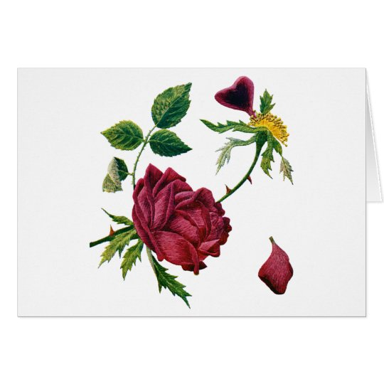 Beautiful Red Roses Done in Crewel Embroidery Card
