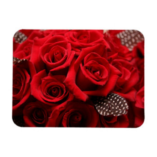 Beautiful Red Roses Magnet