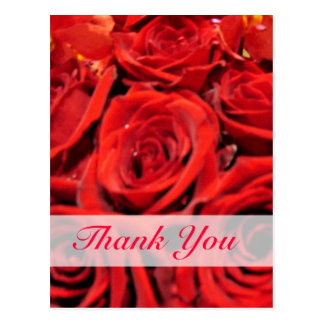 Beautiful Red Roses Thank You Postcards