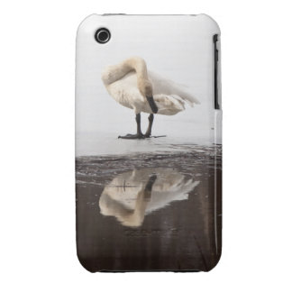 Beautiful Reflection iPhone 3 Case