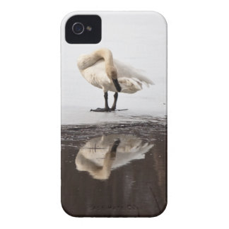 Beautiful Reflection iPhone 4 Case-Mate Case