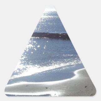 Beautiful Reflections Triangle Sticker