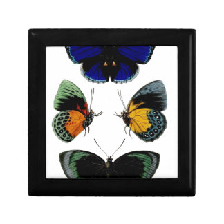 Beautiful retro vintage butterflies picture gift box