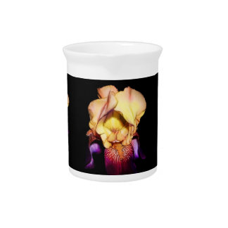 Beautiful Richly Colored Iris Photo  Pitcher