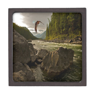 Beautiful River Landscape with Eagle Flying Gift Box