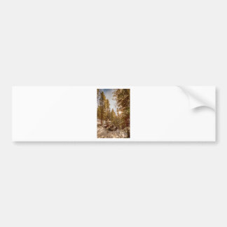 Beautiful Rocky Mountain Winter Day Bumper Sticker