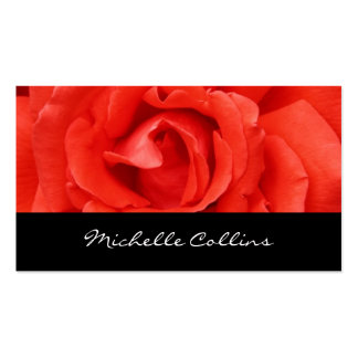 Beautiful romantic red rose personal profile Double-Sided standard business cards (Pack of 100)