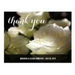 Beautiful Romantic White Rose Wedding Thank You Post Card