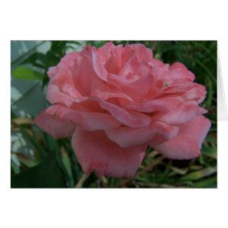 Beautiful Rose/Beautiful Friend Card