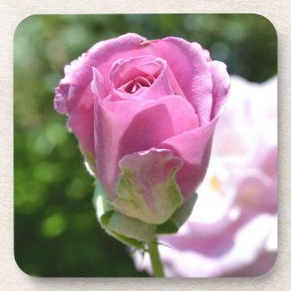 Beautiful Rose Bud Coaster Set
