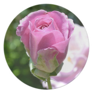 Beautiful Rose Bud Plate