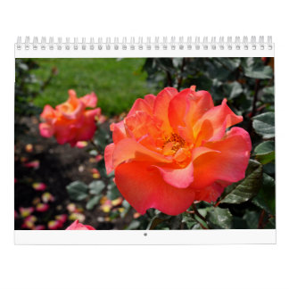 Beautiful Rose Calendar