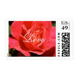 Beautiful Rose Love 06med Stamp