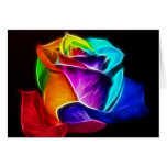 Beautiful Rose of Colors 5 Greeting Cards
