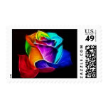 Beautiful Rose of Colors 5 Postage Stamp