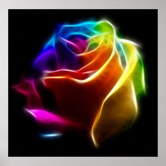 Beautiful Rose of Colors No2 Print