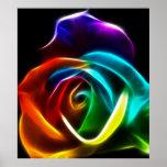 Beautiful Rose of Colors No3 Poster