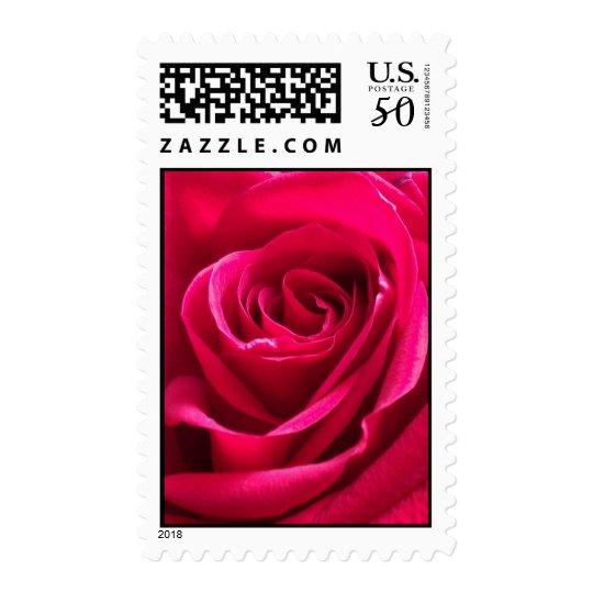 Beautiful Rose Stamp