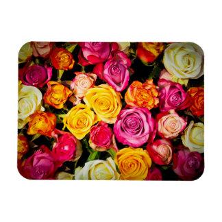 Beautiful Roses Magnet