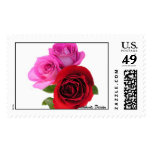 Beautiful Roses Postage Stamps
