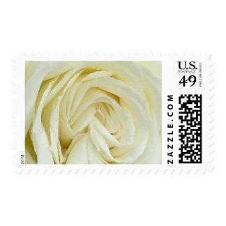 Beautiful Roses Stamps