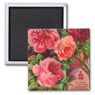 Beautiful Roses Vintage Floral Advertisement Magnet