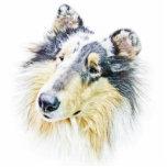 Beautiful Rough Collie dog art Photo Sculptures