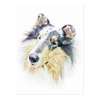 Beautiful Rough Collie dog art Postcard