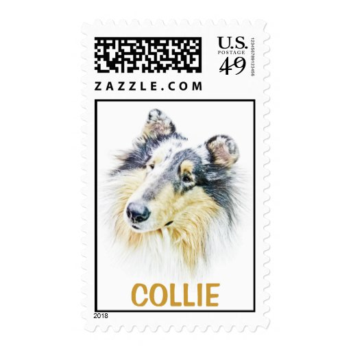 Beautiful Rough Collie dog art Stamps