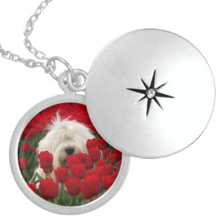 Beautiful Round Sterling Silver Locket and Chain