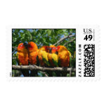 Beautiful Row of Cute Little Parrots Postage Stamp