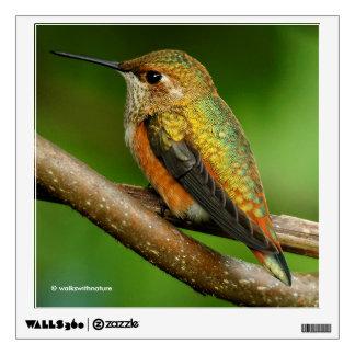 Beautiful Rufous Hummingbird on Twining Vines Wall Sticker