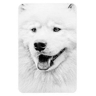Beautiful Samoyed dog art Magnet