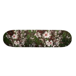 Beautiful Sand Cherry Skateboard Deck