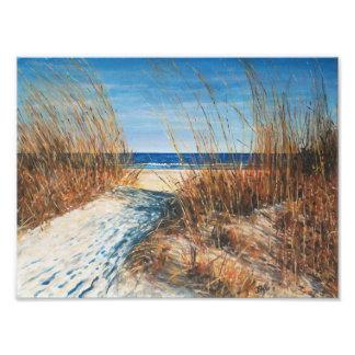 Beautiful Sand Dunes II Photo Print.